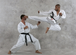 karat_coupe_de_france_63_semaines_47_2009_sports_karate