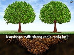 friendship-56v
