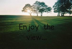 Enjoy the View (2)