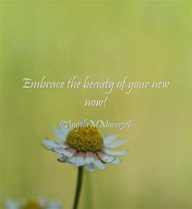 Embrace-the-beauty-of