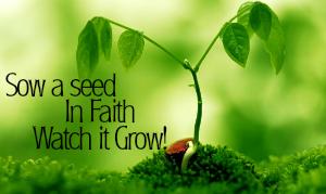 Sow-a-seed-p1_j_jpg_j