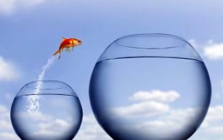 A Leap of Faith 1